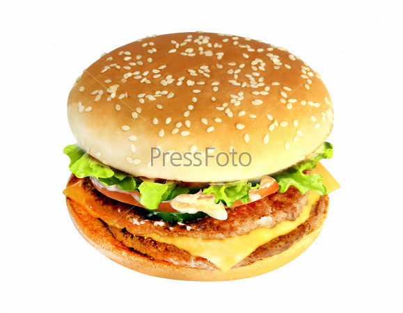 tasty Burger with meat and cheese