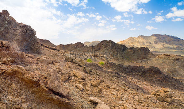 Пустыня Руб-эль-Хали, ОАЭ