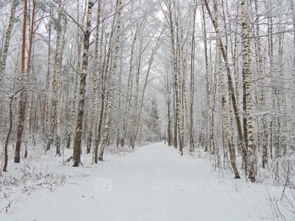 Опыты снег видео