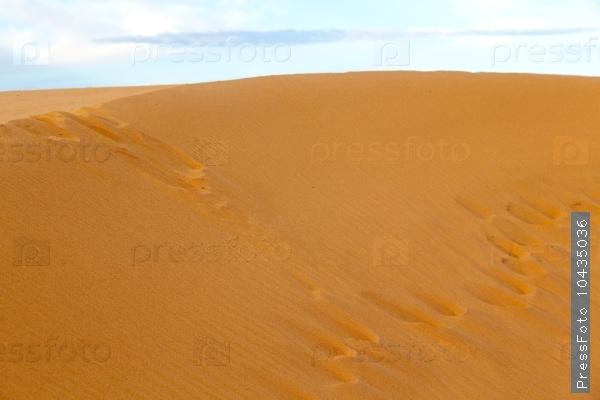 in the desert  morocco sand   dune