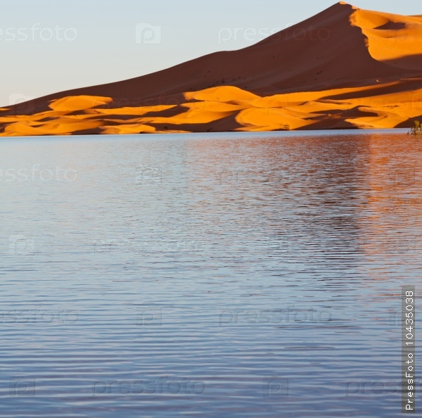 sunshine in the lake yellow  desert of morocco sand and     dune