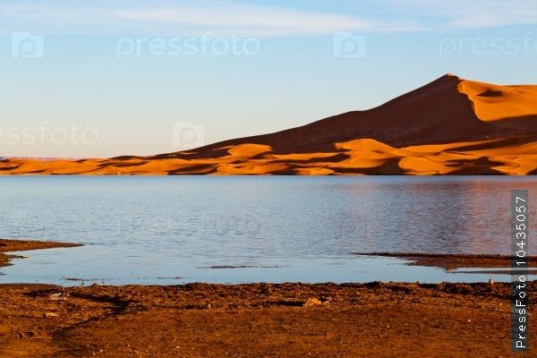 sunshine in the lake yellow  desert