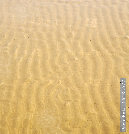 morocco in africa brown coastline wet sand beach near atlantic o