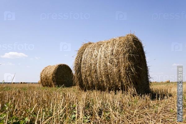 haystacks straw . summer