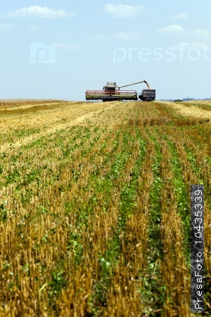 Harvester in the field