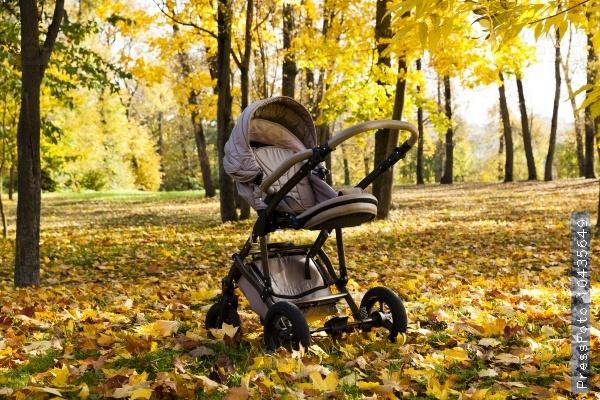 stroller.  autumn season