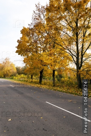Autumn road . country