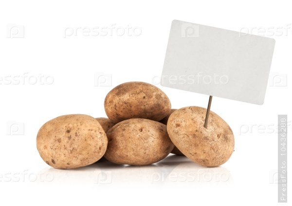 Fresh potatoes with price tag