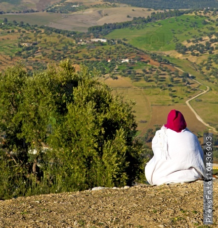 from high in the village morocco africa field and constructions