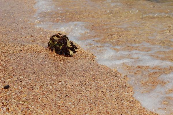 Кристально чистая вода на пляже