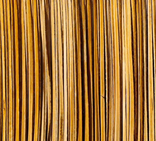 Текстуры бамбука