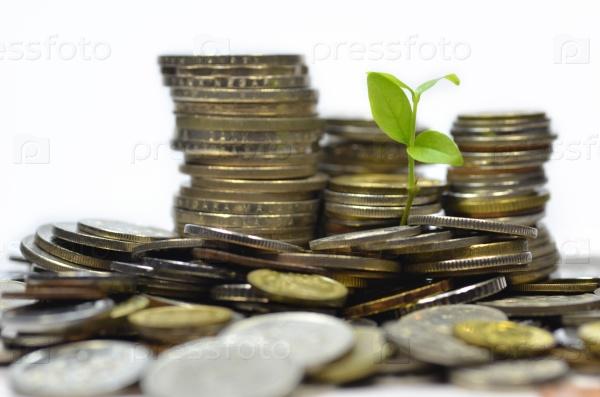 Росток и много монет