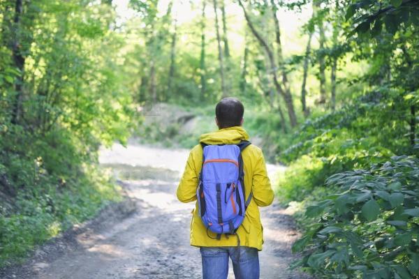 Пешие прогулки в лесу