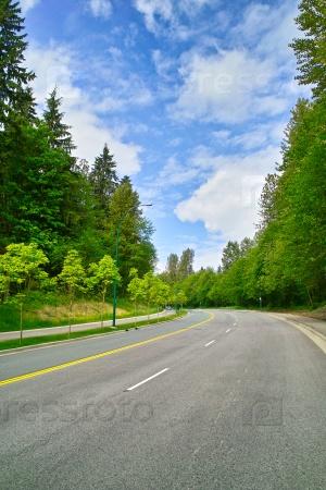 Через лесные дороги
