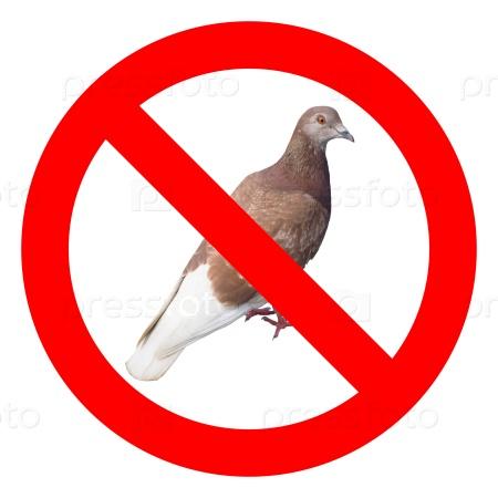 Знак не кормить голубей