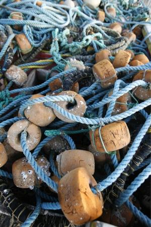 Морские сети