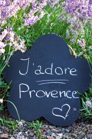 Доска с надписью «J'adore Provence» в саду лаванды
