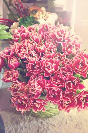 Букет красивых цветов - тюльпанов