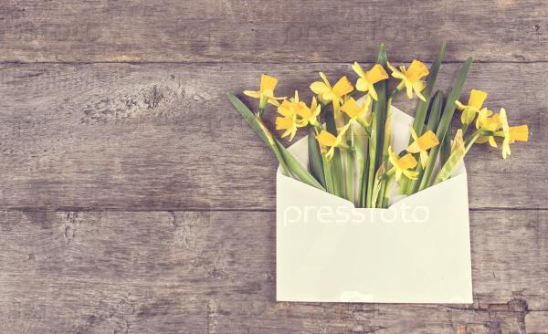Желтые нарциссы в конверте
