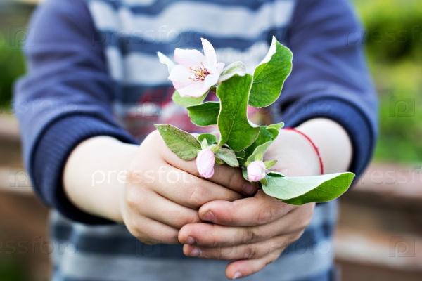 Весенние цветы в руках ребенка
