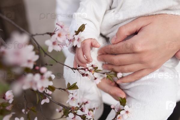 Детские руки тянутся к цветам