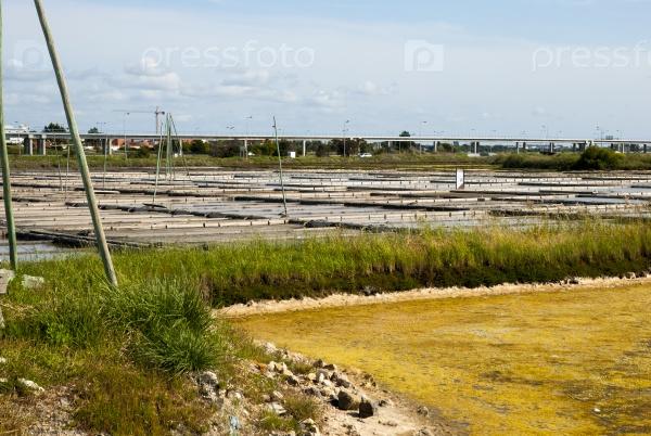 Добыча соли, Португалия