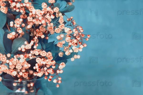 Букет цветущего барбариса