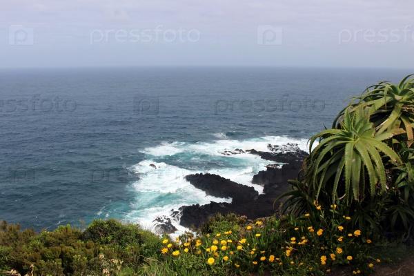 Океанический берег