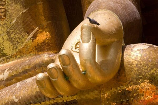 Голубь сидит на руке большого золотого Будды