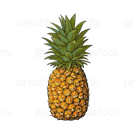телефоны, часы дали папуасам лимонки сказали новый вид ананаса странице найдете