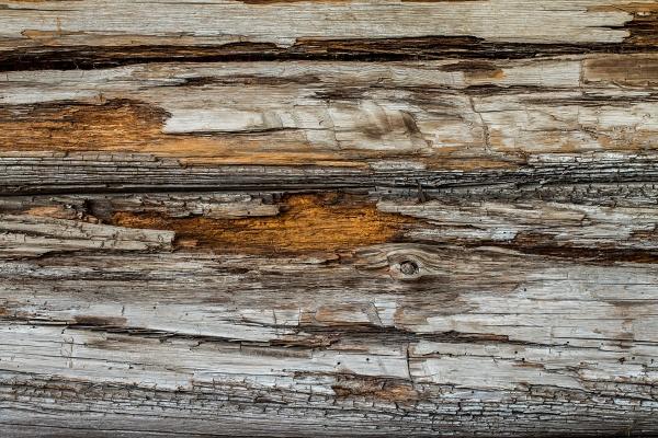 Старая деревянная стена