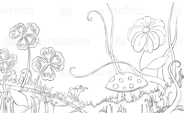 Цветы, травы и грибы на поляне. Книжка-раскраска