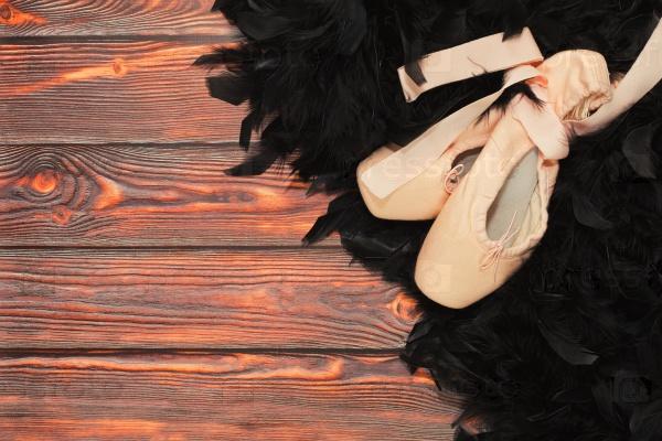 Балетный костюм Черного лебедя