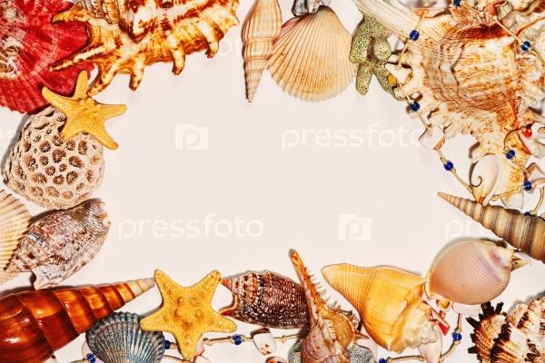 Рамка из морских раковин