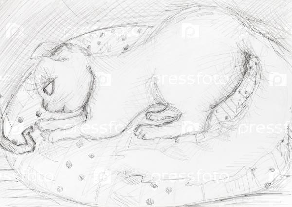 Эскиз кошки на циновке