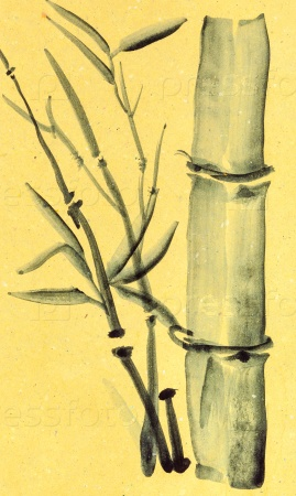 Бамбук на желтой цветной бумаге