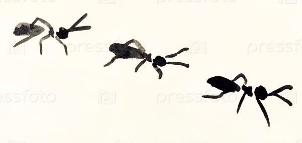 Линия муравьев