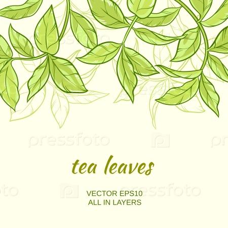 Фон с зеленым чаем листьями