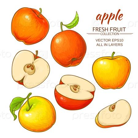 Спелые яблоки на белом фоне