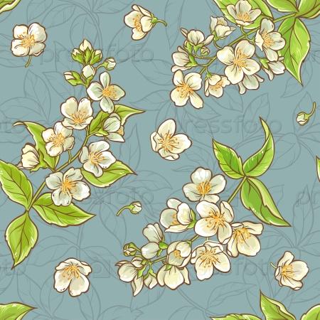 Жасмин цветы бесшовные узор на синем фоне