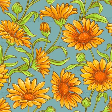 Цветки календулы бесшовный узор на цветном фоне