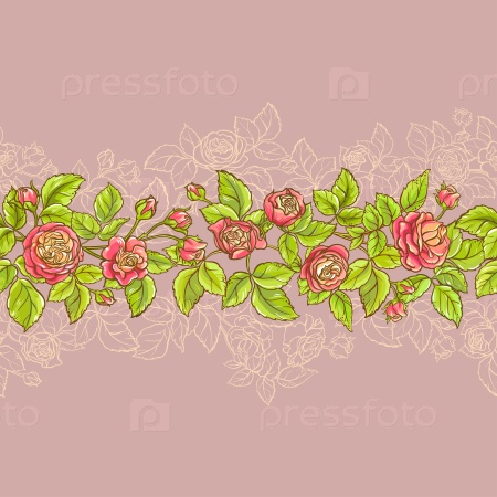 Розы на цветном фоне