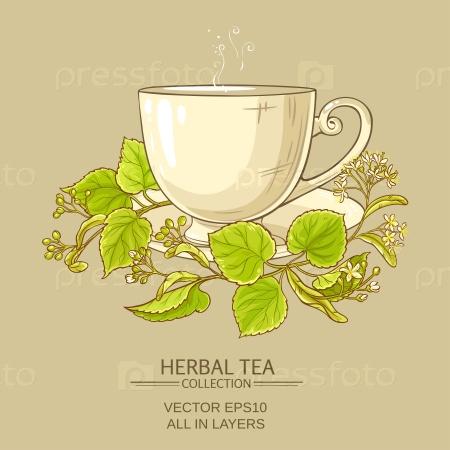 Чашка липового чая на цветном фоне