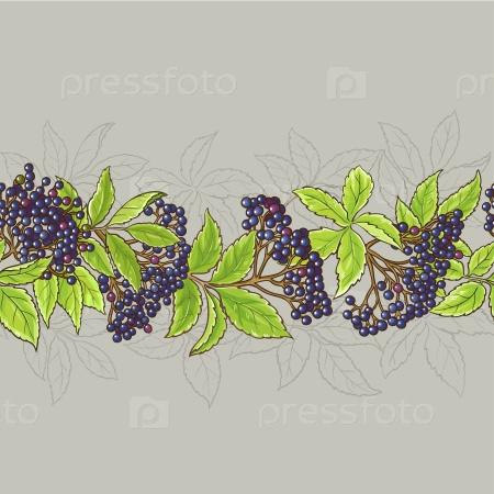 Бузины ветви бесшовный узор на цветном фоне