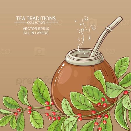 Чай мате в тыкве на цветном фоне