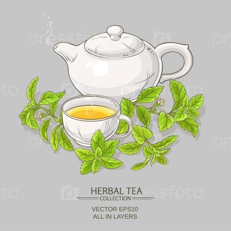 Стевия и чашка чая
