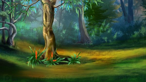 Дерево в густом лесу
