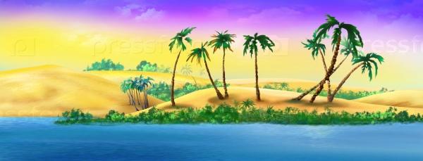 Пальмы на песчаном берегу реки