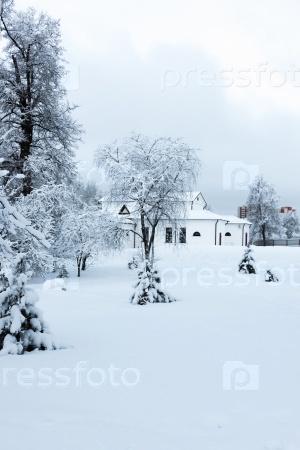 Зимний дом в деревьях