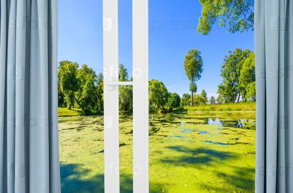 Вид из окна на болото